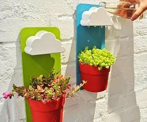 Rain Cloud Watering Pot