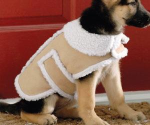 Shearling Fleece Winter Dog Coat