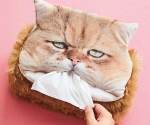 Cat Head Tissue Box