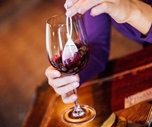 Purifying Wand Wine Filter