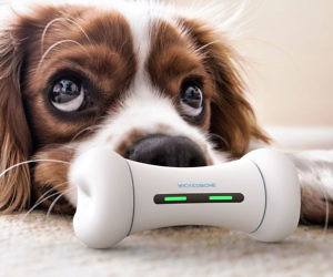 The Interactive Smart Dog Toy