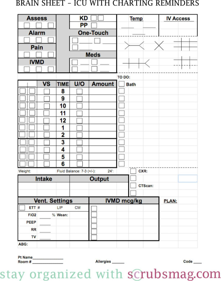 4+ Nursing Worksheet Templates Free Download