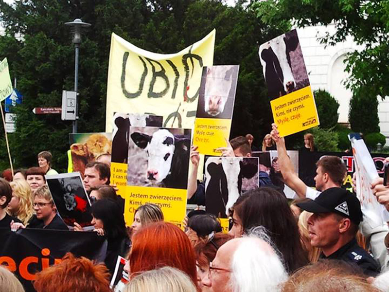 Polish animal rights demonstrators hold a rally in Warsaw opposing ritual slaughter, or shechitah, July 11, 2013. (photo credit: Empatia PL Facebook/JTA)