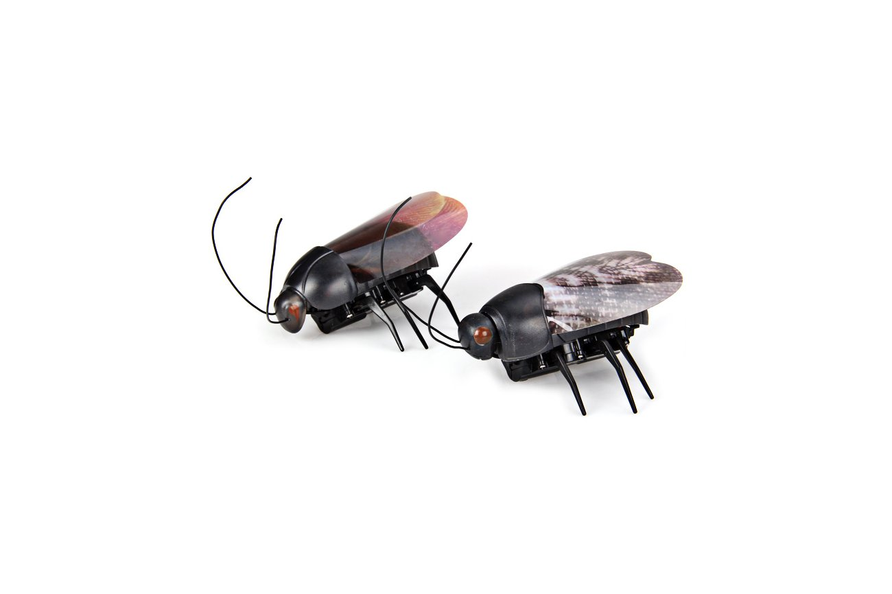 Funny Rc Bug Toy From Universbuy On Tin