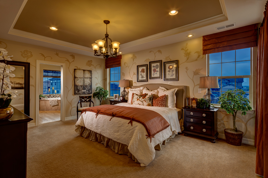 New Luxury Homes For Sale In Parker CO The Hills At Parker