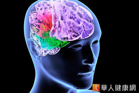 核桃含有不飽和脂肪酸,可增強大腦神經細胞的活力及血管彈力,學生們或上班族可常吃核桃補一下腦,對工作學習的效力有所幫助。
