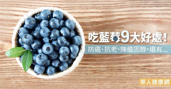 吃藍莓9大好處!防癌,抗老,降膽固醇,還有... | 養生保健 | 華人健康網