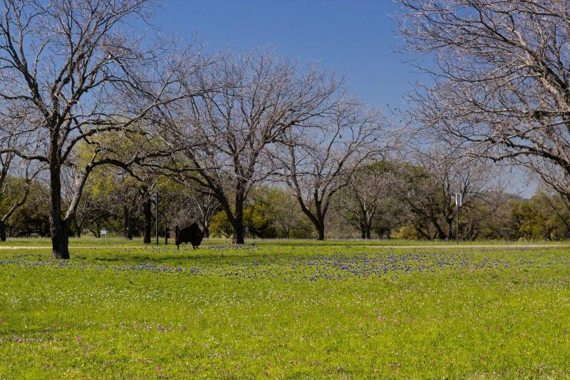Texas Hill Country & LBJ Ranch Tour From Austin - Austin. United States   Gray Line