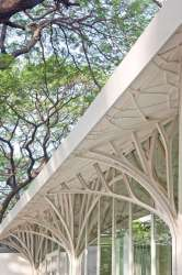 Branching Structural Beams: The Tote is Ethereal and Magical Elvish like Architecture