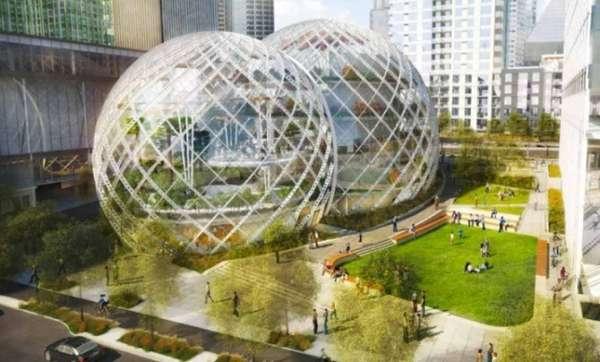 Arboreal Tech Company HQs  Amazon biosphere office