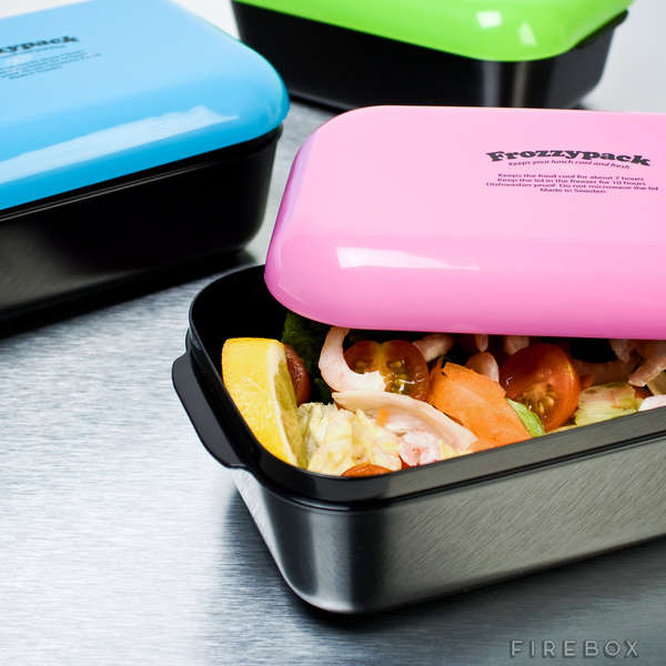Mini Refrigerator Containers  Compact Lunch Boxes