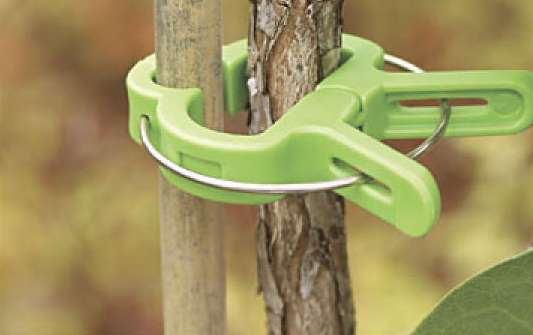 PlantPerfect Clothespins  Flower and Vine Clips