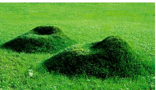 Diy Grass Chairs Grow Your Own Eco Friendly Organic Lawn Furniture