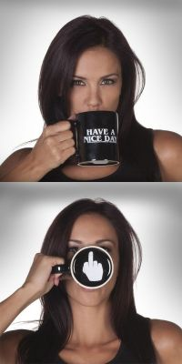 Obscene Gesture Mugs : have a nice day mug