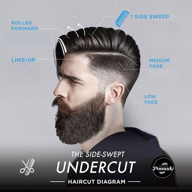 Hair Cutting Diagrams Haircut Diagram For Women39s