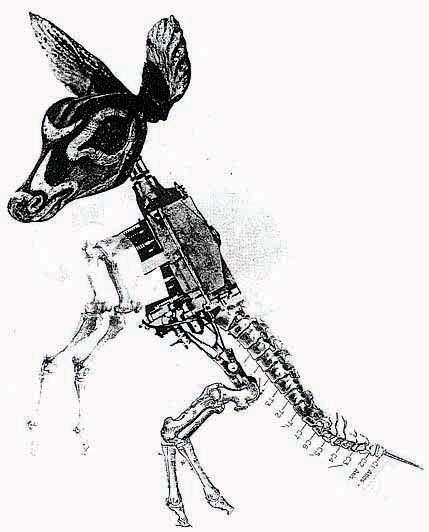 Machine-Animal Illustrations : nicolas lampert