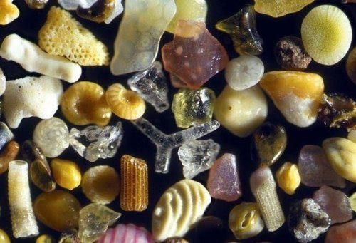 Microscopic Grains Sand