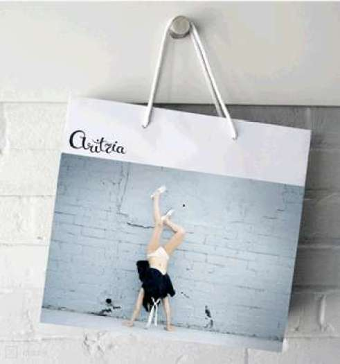 Image result for aritzia shopping bags