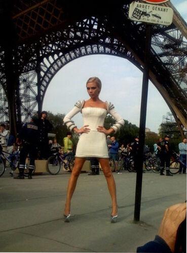 Victoria Beckhams Personal Blog DVB Style