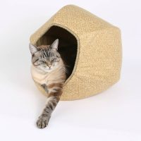 Designer Cat Beds for Most Capricious Felines