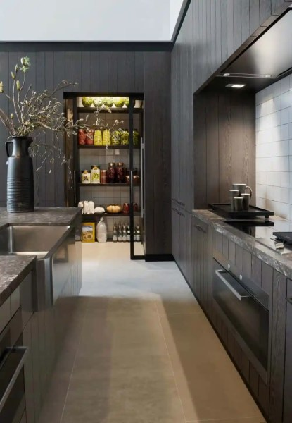 modern architecture kitchen Modern Pantry Ideas That are Stylish and Practical
