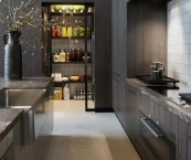 contemporary kitchen pantry