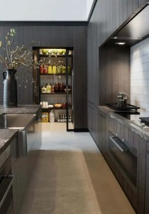 Modern Kitchen Pantry Design