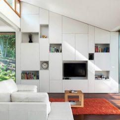 Living Room Cabinets Built In Ideas For Apartment Modern Ins Every And Purpose Gallery Storage