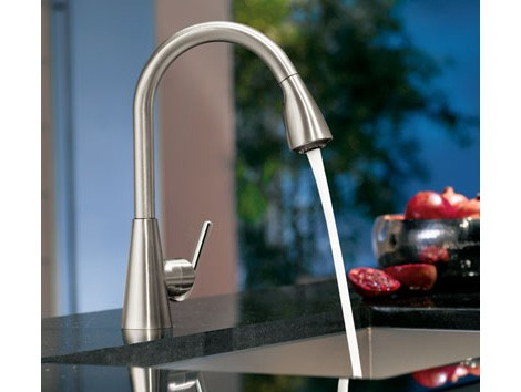 moen ascent kitchen faucet new