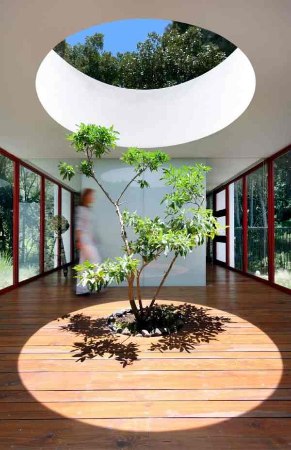 Homes Built Trees 13 Creative Examples