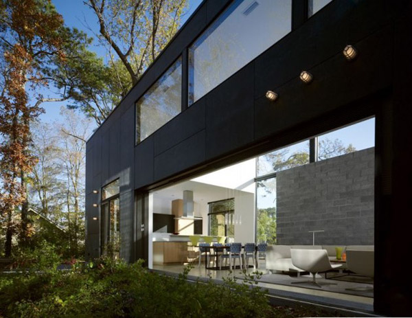 bay view homes natural modern