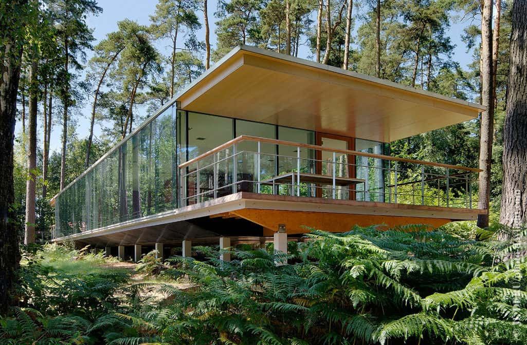 Seethough Glass Box House has Best Views of the Forest
