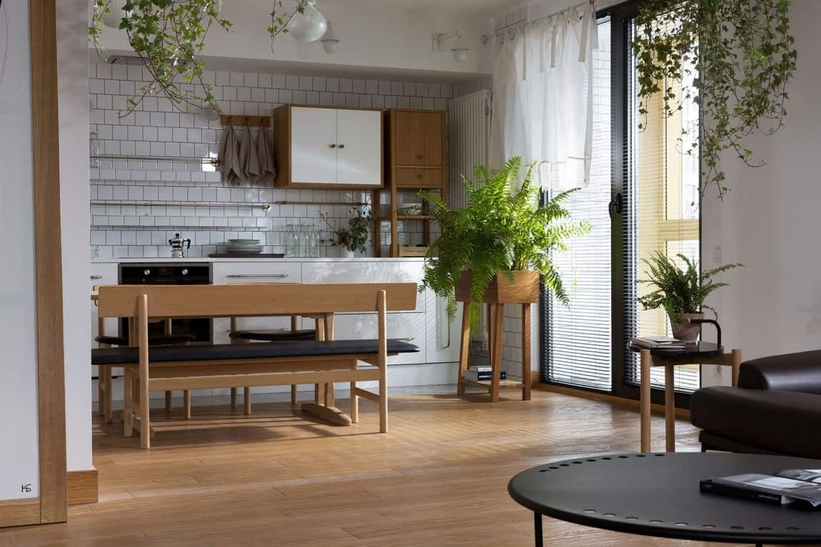 Apartment Jazzed up with Plants for Air Purification