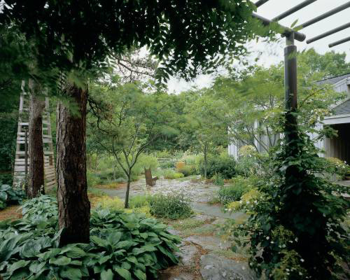 Garden Design Ideas Inspired By Ancient Japanese Tea Garden