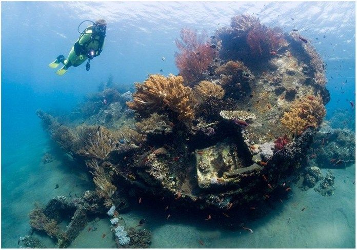 Dive On The Japanese Shipwreck In Amed Bali