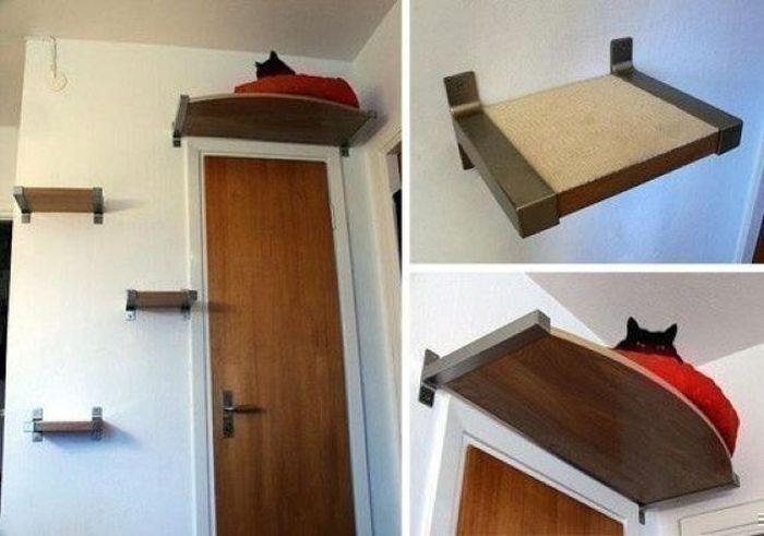 Kediniz İçin Yuva Tasarımı