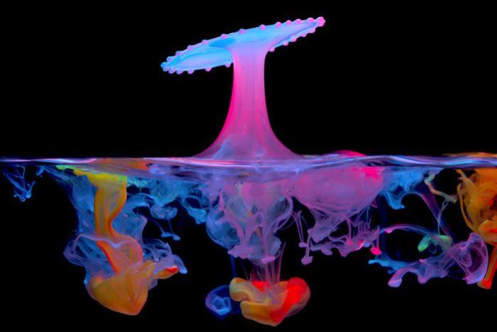 Sıvıların Sıçrama Resimleri (10 Fotoğraf)