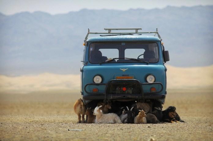 Có một Mông Cổ đẹp kinh ngạc - Ảnh 17.
