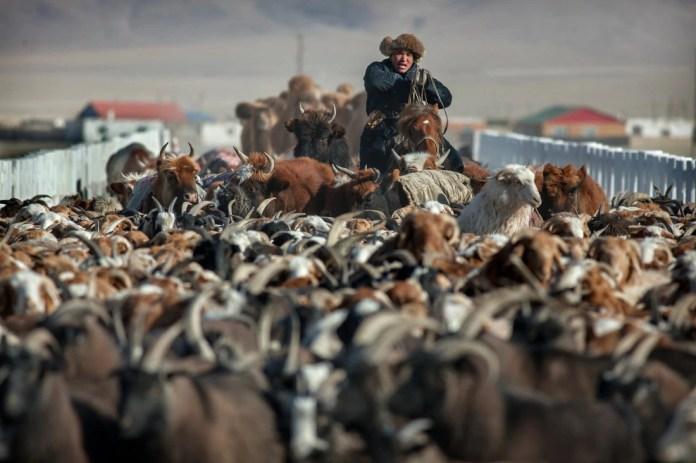Có một Mông Cổ đẹp kinh ngạc - Ảnh 19.