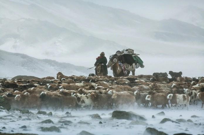 Có một Mông Cổ đẹp kinh ngạc - Ảnh 15.
