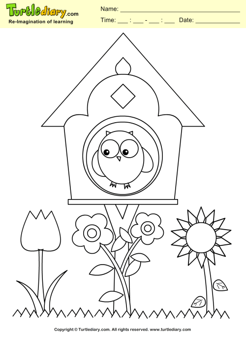 small resolution of Bird House Coloring Sheet   Turtle Diary