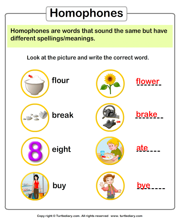 Look At Picture And Write The Homophone Worksheet