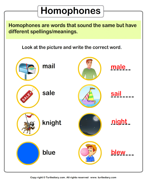 Write The Homophone Of A Given Picture Worksheet