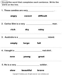 Complete the Sentence with Correct Adjective Worksheet ...