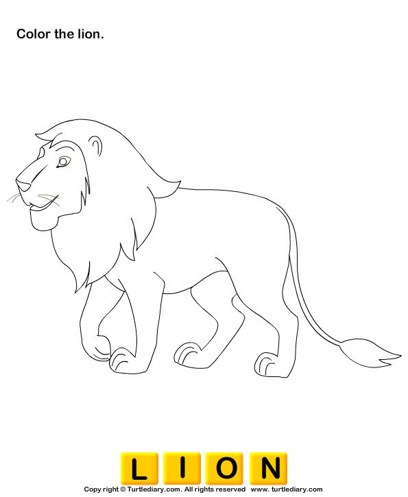 Wild Animals Worksheets Preschool Sketch Coloring Page