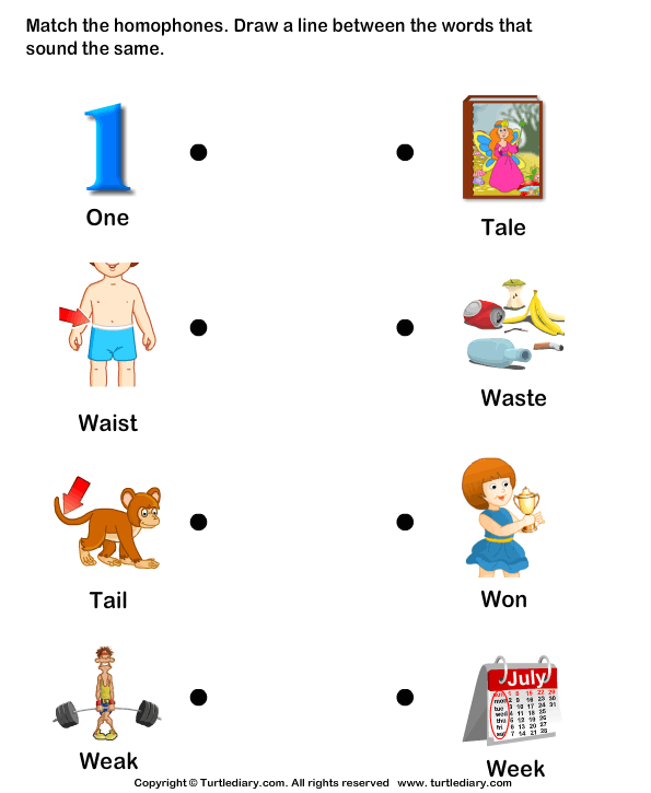Read And Match Homophones Worksheet
