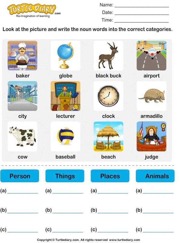 Sort Nouns as Person Place Animal or Thing Worksheet