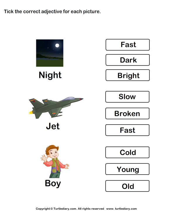 Tick Adjectives for Pictures of Night Jet Boy Worksheet