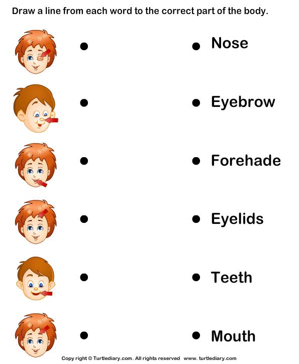 Printables Preschool Science Worksheets preschool science worksheets toysgiftsrus com number names for kindergarten printable coloring