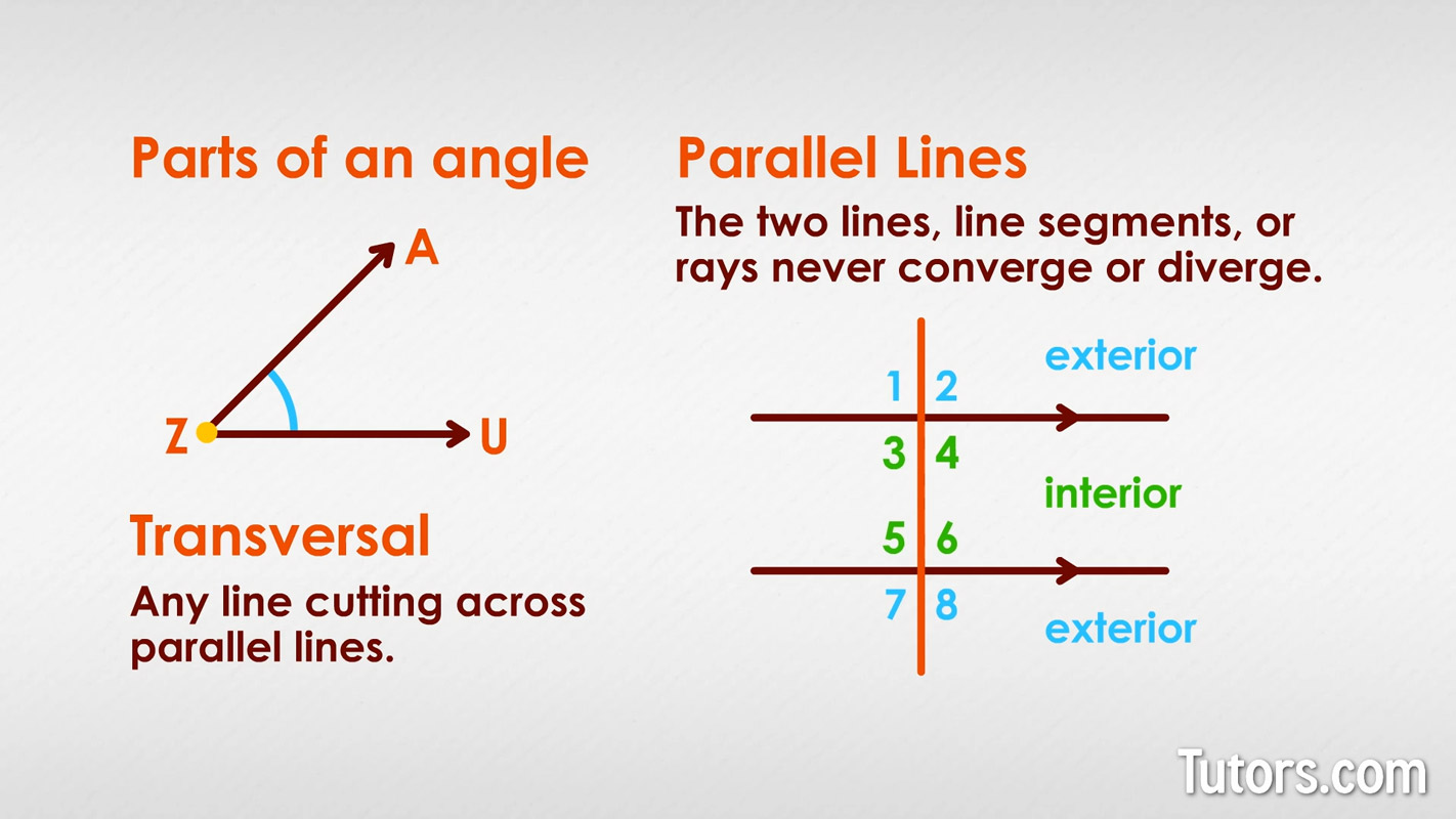 Alternate Interior Angles Definition Theorem Examples